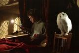 Сериал по мотивам книг о Гарри Поттере находится на ранней стадии разработки канала HBO